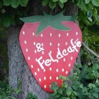 Erdbeeren & Feldcafe
